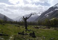 Elbrus2015P1210230